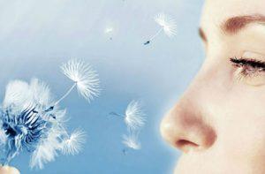 Alergia Ocular Salud Ocular