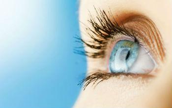 cornea del ojo humano