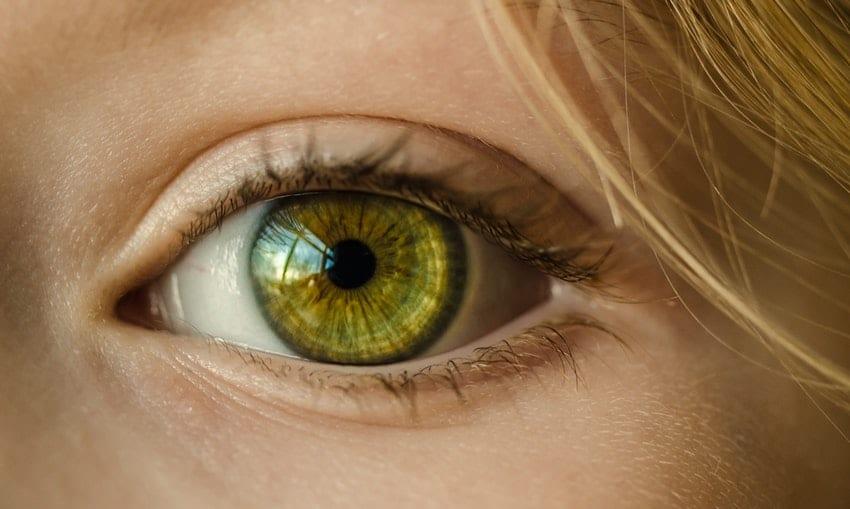 que es el fondo de ojo