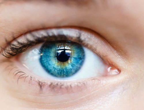 Función, alteraciones y enfermedades del iris del ojo