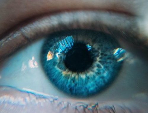 Midriasis, por qué las pupilas dilatadas no reaccionan a la luz